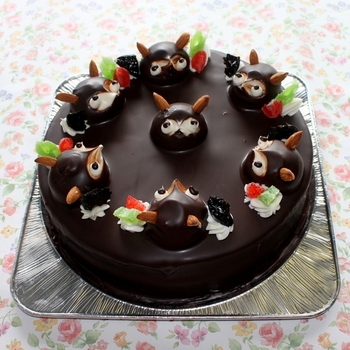 愛くるしい表情に癒されそうで、食べるのがもったいない、たぬきケーキ。気になるお店が近くにあったら訪れて、素朴な昔ながらの味を体験するのも良さそう。お店によって土台のケーキや、飾り付けなど違うので、あれこれ食べ比べしたくなるかも。