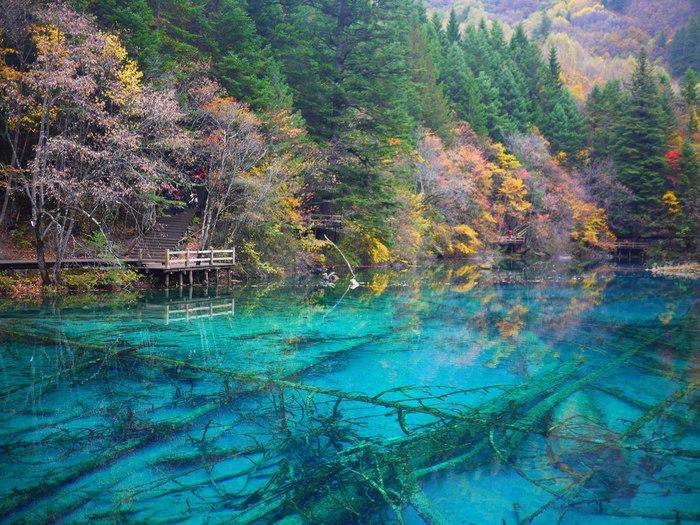 陽射しを浴びてエメラルドグリーンに輝く湖、どこまでも澄み渡った透明な水、鬱蒼と茂る樹々が織りなす風光明媚な景色が広がる九寨溝は、「この世の仙境」と称されています。