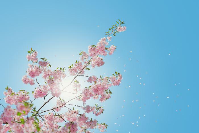 「まだ春だから」などと、油断は禁物。紫外線対策を怠るとシミやそばかすの原因になるだけでなく、肌のハリや弾力が低下し、肌老化を招いてしまいます。今回は、今のうちからできる紫外線対策をご紹介します。しっかりお肌をガードして、紫外線から肌を守りましょう。
