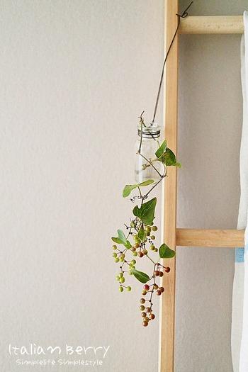 無理に花瓶に活けるよりも、垂らすように飾ると雰囲気が出て素敵ですよね。 DAHLIAさんは、スパイスの空き瓶に革紐を巻きつけてぶら下げるようにディスプレイしました。棚やテーブルの上だけでなく、緑が欲しい空間にアクセントを加えることができます。