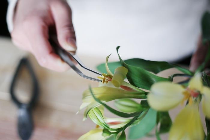 葉は、花に表情を与えてくれるので、基本的には切り落とさずに残しておくのがべストです。また、アルストロメリアの雄しべの花粉は飾っているうちに花弁についてしまうことがあるので、気になるようであれば、指やピンセットで摘んで取り除きましょう。