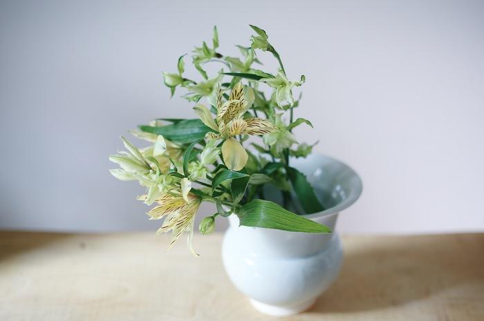 口の広い花瓶に活ける際は、片側に寄せて重ねるようにしても素敵。