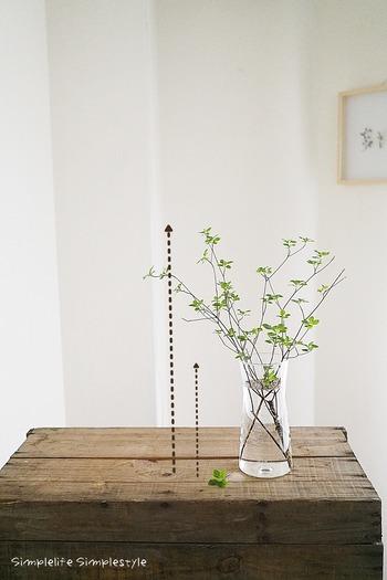 花器の高さを1として、花器から出る枝の高さも1になるようにするとバランスがとれるのだそう。 枝によって表情が異なるので、様子を見ながら調整してみてくださいね。