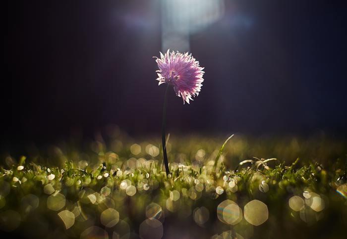 晴れの日もあれば雨の日もあるように。新しい環境で失敗や挫折を経験し、心が深く傷ついた時に、あなたの大切な人が一日でも早く元気になってくれるような魔法の言葉をご紹介します。