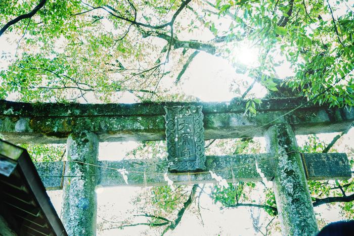 原さんがよく訪れる「大原八幡宮」。境内は澄みきった空気に満たされていた
