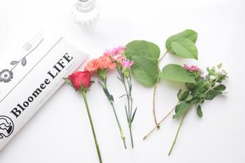 他にも、季節の生花を届けてくれる、Bloomee LIFEの「お花の定期便」という今注目のサービスもあります。洗面台にちょこんと置いたり、リビングテーブルを華やかに飾ったりと、好みのボリュームに合わせてお好きなプランが選べます。