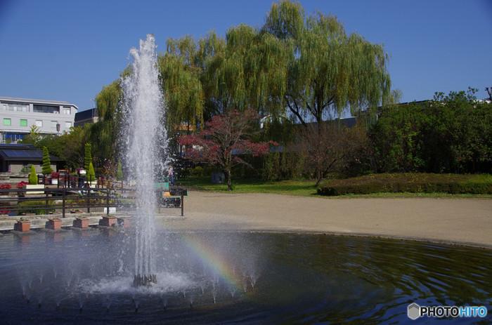 平坦で広い道が多く、子どもが遊べる広場も充実している京都府立植物園。ゆっくりと植物を見て回ることができます。障害者手帳やきょうと子育て応援パスポートの提示で入園料の免除を受けることができます。詳細は公式ホームページをご確認ください。