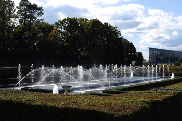 梅、桜、アジサイ、バラなど四季を通じて様々な花々が美しく咲き誇る神代植物公園は、1961年に開園された植物公園です。