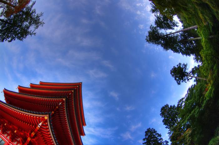 新選組ゆかりの寺として、全国に名を轟かせている高幡不動尊金剛寺は、8世紀初頭に開基された真言宗の寺院です。
