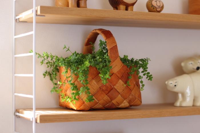 植木鉢ではなくカゴに植物を入れて棚に飾っている事例です。伸びてきた葉っぱがカゴから垂れているのがとてもかわいいですよね。ナチュラルなテイストのカゴがぴったりです。植木鉢に入れなくてはいけないという概念にとらわれず、インテリアに馴染むものに入れてみるという発想が素敵なレイアウトを生み出します。