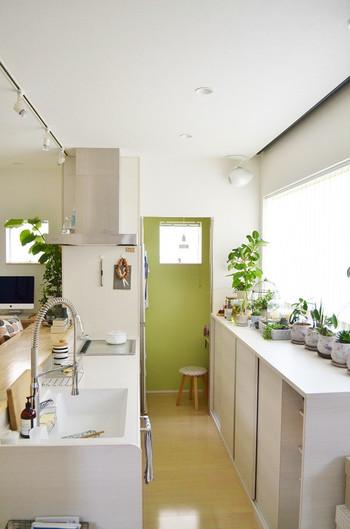 こちらの日当たりのよいキッチンには、お庭のようにたくさんの植物が置かれています。キッチンは水道が近いので水やりもすぐにでき、よく目にする場所のため状態管理もこまめにできて、意外と植物を育てやすい所。爽やかなキッチンだと、家事の時間も楽しくなりそうです。