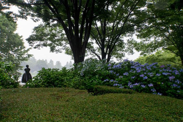冬は梅、春は桜・チューリップ、初夏はアジサイ、夏はひまわり、秋はコスモスなど、四季折々で美しい花々を咲かせる昭和記念公園は、1983年に開園された国営公園です。