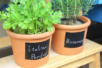 プランターポットに黒板タイプのマスキングテープを貼って、チョークで植物の名前を書いています。見分けにくいハーブ類も、これならわかりやすく&おしゃれに区別できますね。