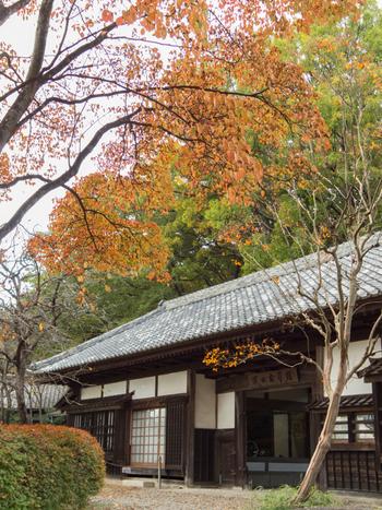 「益子焼」の名を全国的に広めた陶芸家・濱田庄司の自邸を活用し1977年4月に開館した「益子参考館」。5棟の展示館と工房や登り窯などが敷地の中にゆったりと配置され、季節の草花を楽しめます。