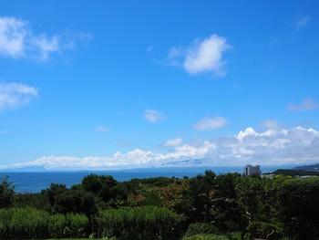 展望台からは、大磯の街と、相模湾が一望!天気が良ければ、雄大な富士山の姿も楽しめます。季節を選ばず、心地よい散策ができますよ。