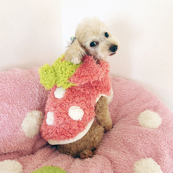 まだ肌寒い時期には、こんなフワフワのウェアはいかが?もぎたて苺のモチーフで春を先取り♪フードが苺のヘタの部分になっていて、かぶると苺の妖精さんに変身できちゃいます。