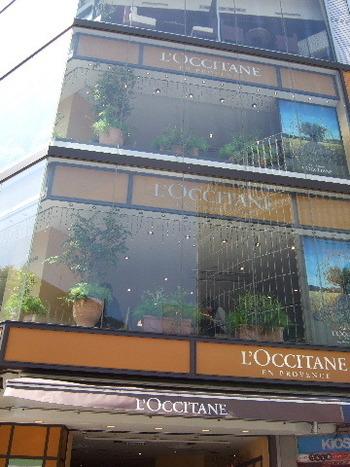 """渋谷区道玄坂にある、南仏プロヴァンス発のナチュラル派コスメブランドとしても知られている""""ロクシタン""""のカフェ。"""