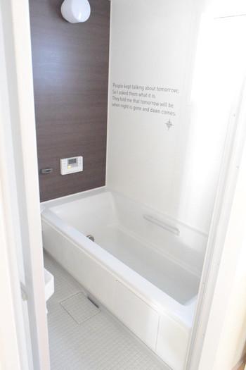 エプロンがついているタイプの浴槽であれば、年に一度はエプロンを外して浴槽下を掃除しましょう。排水溝を水の入った袋などでふさぎ、お湯を溜めて粉末漂白剤を溶かし浸け置くと汚れが落ちやすいようです。エプロン内部は扇風機などで完全に乾かしてから閉じます。  カビの胞子が飛び散る場合があるので、エプロン内部を洗う際には最後に浴室全体も掃除しましょう。