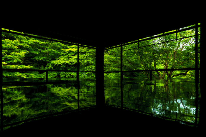 あたたかい季節は桜や青々とした新緑の風景を楽しめるほか、秋になれば、真っ赤な紅葉の世界を楽しむことも*。カメラ片手に、京都へ訪れてみてはいかがでしょう♪