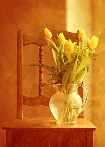 ガラス製のピッチャーは、すらりとした茎のかたちも楽しめるのでみずみずしいアレンジがおすすめ。背の高いチューリップにはボリュームのあるガラス製のピッチャーがよく合います。花の長さはピッチャーの2倍程度にすると立ち姿が綺麗に見えますよ。