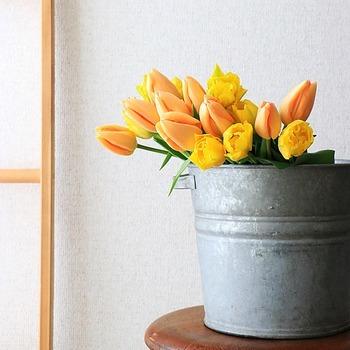 インテリア用のブリキ雑貨は耐水性が乏しいものもありますが、プラ容器を仕込めば安心して活けることができます。色々なアイテムを花器として使えるようになるので、オリジナルアレンジが楽しめそうです。