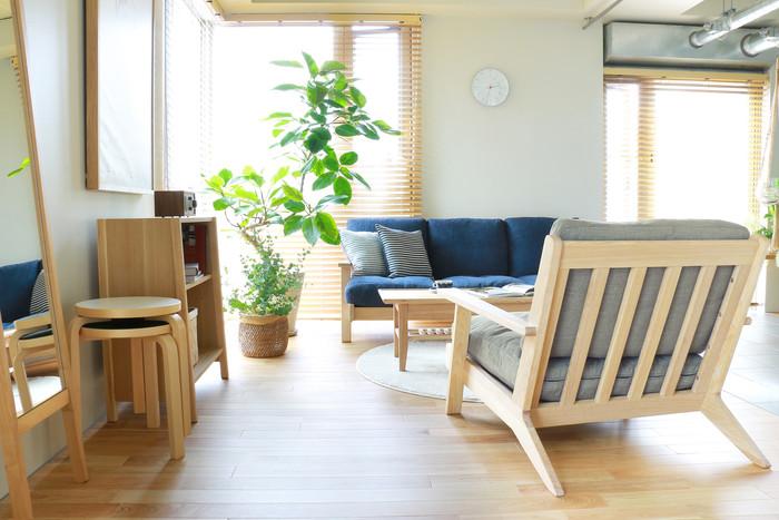 代わりに陽当りの良い場所を好む観葉植物を窓辺に並べるのも、おすすめな方法です。大きな観葉植物なら日除け代わりにもなり清涼感もUP。とはいえ、葉も日焼けする場合がありますのでレースカーテンやブラインドをしたほうが良いでしょう。