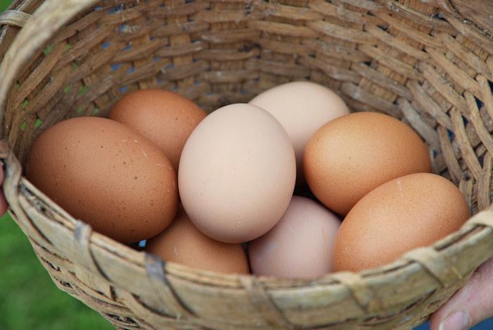 冷蔵庫から出してすぐの卵を使うと、急激な温度差で殻が割れてしまいます。ゆでる前に常温に戻すか、10分ほど水に浸けて卵の温度をなじませてください。
