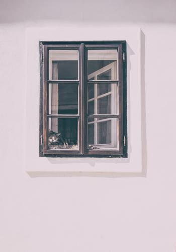 フィルムと同じく特別な施工は必要なく、市販品で手軽にコーティングできます。窓の汚れをしっかり落として塗るだけでOK。