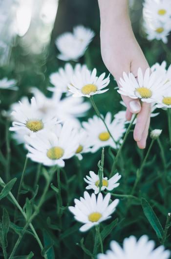 春は何かを変えたり始めたりするのにちょうどいい時です。それは今までやってきたことを見直すいい時期ともいえます。疑問を感じながら、何かを我慢しながら続けていることはないでしょうか。