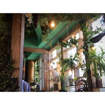 植物がいちばん喜ぶ窓辺に、専用シェルフを設置しグリーンをランダムに並べても素敵。いろいろな形の葉っぱが目を癒してくれそう。