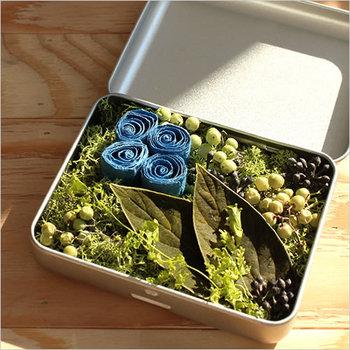 可愛らしい缶の箱は実はアロマディフューザー。缶の開閉で香りを調整したり出来て便利。