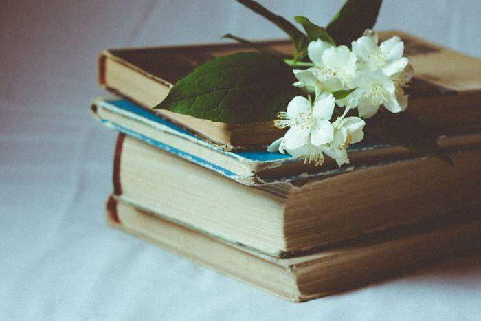 上段部分は、比較的読む頻度は少ないけれど、大切に保管しておきたいメモリアルブックを収納するのに最適な場所です。見えにくい場所ではあるので、読んだ本を直感で戻せるような収納方法をご紹介します。