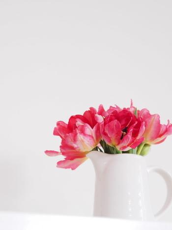 白いピッチャーを花器の代わりにして、可憐なイメージに仕上げました。パリの朝のような軽やかな空気を感じます。