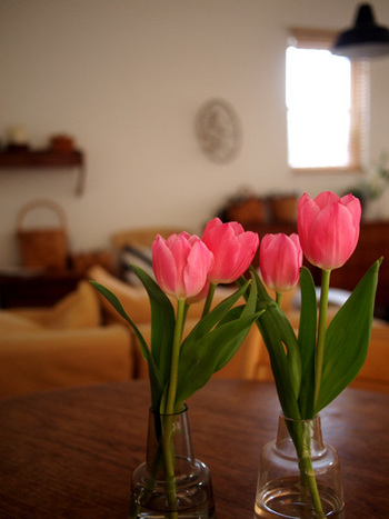 少ない本数のお花をいくつかの花器にわけて入れてみると、リフレイン効果で華やかに見えます。お揃いの花器があるときに試してみたい飾り方ですね。