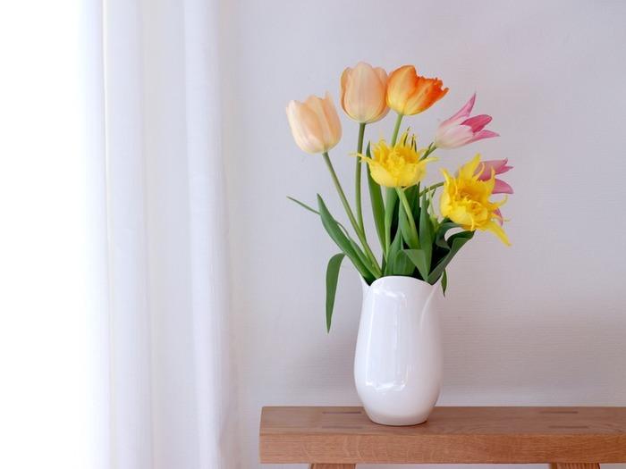 チューリップは切り花になってからも、茎が伸びたり、花を開いたりするお花です。そして、太陽の光にとても敏感で、お日様の光を感じると花を開き、夕方になるとまた花びらを閉じるという性質を持っています。こちらは、朝のチューリップの様子です。