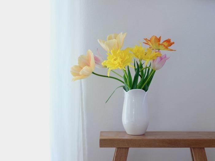 同じお花がお日様の光を感じて、花びらを開いている様子です。一日の中で大きな変化を楽しめるお花というのはなかなかないので、じっくり観察してみたくなりますね。