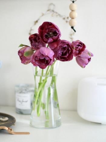 すこし首が垂れるタイプのチューリップは背の高い花器がおすすめ。シックな色合いが落ち着きを帯びています。