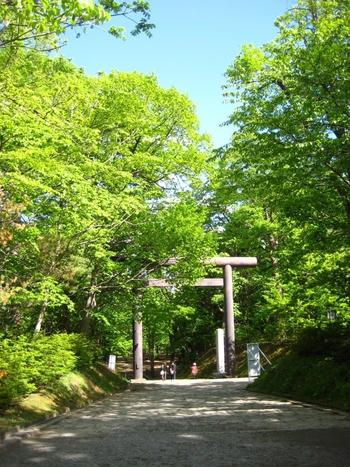 北海道神宮はとても大きく、誰をも歓迎してくれるようなおおらかさを感じる神社。境内に入る前に3つの鳥居があり、くぐる鳥居によってご利益が変わるといわれているんです。  縁切りにご縁があるとされているのが第二鳥居。恋愛・悪運・悪癖・病気との悪縁を断って、幸福なご利益を頂きましょう(※)。  (※)鬼門に位置した第二鳥居から神宮に入ると恋愛運・結婚運が低下してしまうこともあるので、心配な方は別の鳥居から入るようにしましょう。