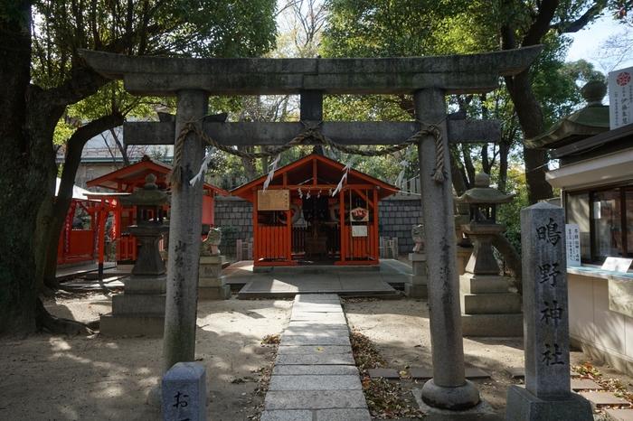 鴫野神社のもうひとつの名物は、土日限定で行われる「崖縁占い(がけっぷちうらない)」。手相や四柱推命の占いも開催されているので、縁切り祈願のお参りに来た際はぜひとも見てもらいましょう!