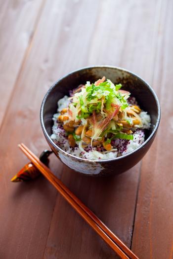アレンジは無限大の、栄養たっぷり日本の国民食「納豆」。日常のレシピに取り入れて、手軽においしく納豆ライフを楽しみませんか?