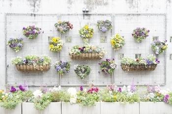 ワイヤーネットやスタンディングネットを設置する方法も、壁面に好きな植物を飾れて便利です。コネクトフックやSカンを上手く取り入れながらセンス良くディスプレイ。