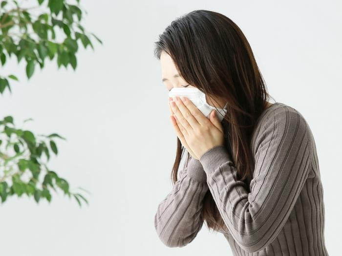 花粉症は、スギやヒノキなどの特定の花粉が鼻、のど、目の粘膜などについた際、アレルギー反応が起こり、くしゃみや鼻水、鼻づまり、さらに目のかゆみといった症状を起こすことで、季節性アレルギー性鼻炎とも呼ばれています。