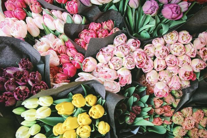 切り花を購入するときは、お花の色味がまだ淡く緑色がかったものを選ぶとよいでしょう。品種にもよりますが、チューリップは徐々に色がのってくるので、色が淡いものの方が長い期間、楽しめます。