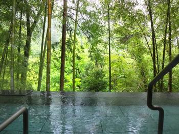 毎日約8,000トンもの湧出量を誇り、1秒間に100L近い温泉を提供。泉質はPH8.8前後でアルカリ性のため肌に優しく、入浴しやすい温泉として人気があります。