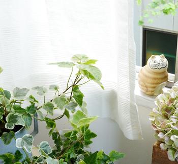 """ぽかぽか陽気が心地いいこれからの季節、お部屋のカーテンにルームスプレーをシュッとひと吹きすれば、窓を開けたときにそよ風と一緒にアロマが優しく香ります。カーテンに使うルームスプレーは、""""ハッカ油""""を使うと虫よけとしても力を発揮してくれますよ!"""