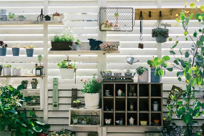 高さのある常緑植物や小さな多肉系植物植物も間隔良く並び、季節のお花と小物のバランスが絶妙なレイアウトです。背景が白く隙間があるので、たくさん並んでいても圧迫感もありません。
