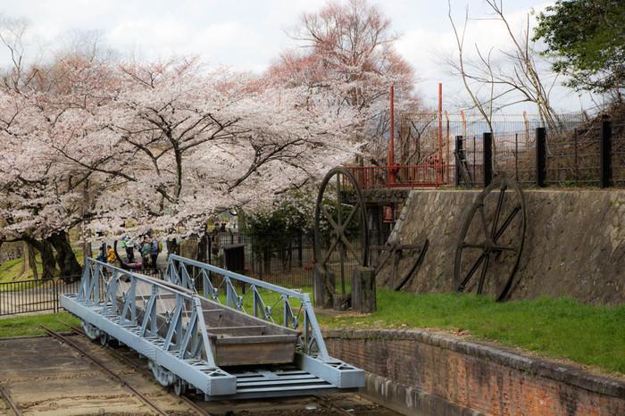 南禅寺の近くにある蹴上(けあげ)インクライン。その昔、京都と大津(琵琶湖)の間では琵琶湖疏水を利用して船で荷物を運んでいましたが、そこに落差があったため台車に船を乗せてこのレールで運んでいたもの(インクライン)。現在では、両脇のソメイヨシノが美しいと評判で観光スポットに。