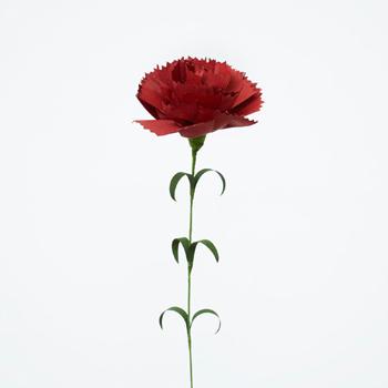 母の日と言えばカーネーションですね。いつまでも色あせないお花は和紙独特の表情と質感があり、和室でも洋室でも似合いそう。
