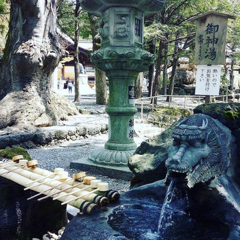 秋宮の手水は「御神湯」と呼ばれ、竜をかたどった口から流れ出るのは温泉です。手水が温泉の神社は全国的にもめずらしいのではないでしょうか。「長寿湯」とも言われていますので、ご利益がありそうですね。
