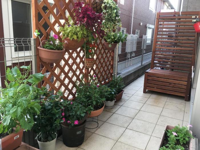 お庭が無い…という人は、ベランダでもOK!プランターを使えば、ベランダでだってちゃんとした野菜を作ることができますよ。葉っぱや実の色を合わせてみたり、ハーブも一緒に植えてみたりして、見栄えの良さも意識して作ることで、おしゃれなベジタブルガーデンが完成します。